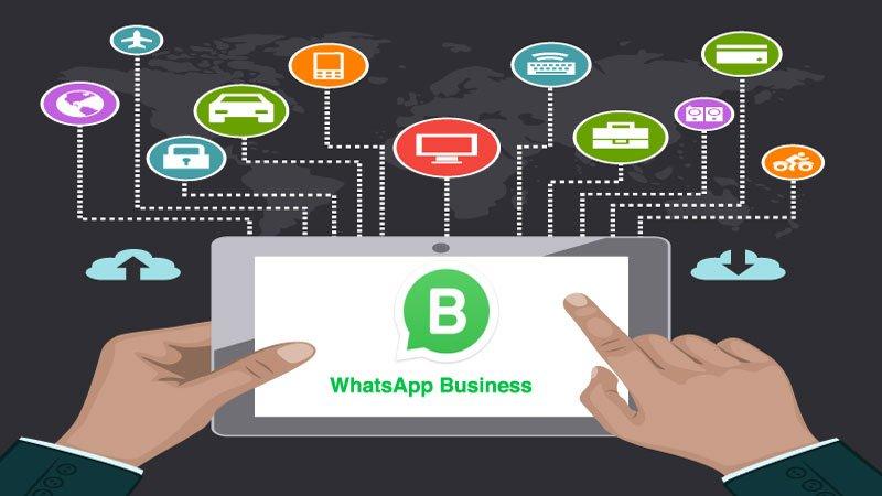 Pesquisa diz que usuários de WhatsApp querem contato com marcas